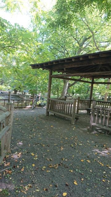 H29・8月 公園①